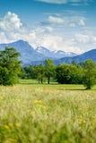 Summer Landscape in Salzkammergut Stock Photo