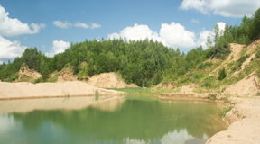 Summer landscape with sandy lake and forest Stock Image