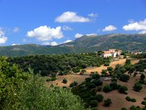 Summer landscape in Sardinia with pines and some houses. Sardinian landscape with wooded hills, Sardinian landscape with trees and bushes, Landscape with royalty free stock photo