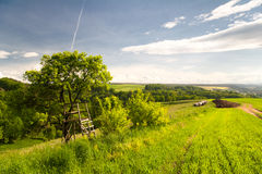 Summer landscape by Seitenroda Royalty Free Stock Photo