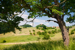Summer landscape by Seitenroda Stock Photo