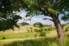 Summer landscape by Seitenroda Stock Photo