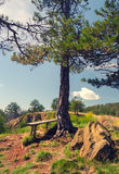 Summer landscape showing wooden bench on top of the mountain Stock Photos
