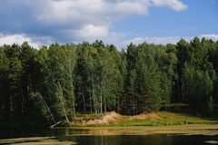 Summer landscape of Siberia. Forest by the lake. Riverside. The forest on the background of the cloudy sky stock images