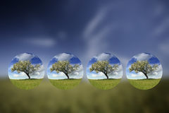 Summer landscape with small globes inside Royalty Free Stock Image