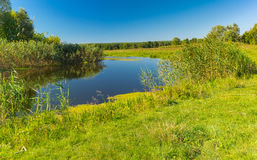 Summer landscape with small river Merla, Poltavskaya oblast,  Ukraine. Pictorial summer landscape with small river Merla, Poltavskaya oblast,  Ukraine Royalty Free Stock Image