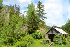 Summer landscape in the somesul rece gorge Royalty Free Stock Photos
