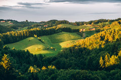 Summer Landscape in Southern Styria Royalty Free Stock Image