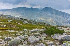 Summer landscape of Spano pole, Pirin National park royalty free stock photo