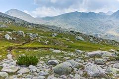 Summer landscape of Spano pole, Pirin National park stock photography