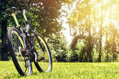 Summer landscape with sport bike on green field. Health and spor Royalty Free Stock Photos