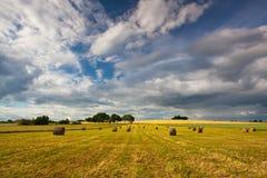 Summer landscape after a storm Stock Image