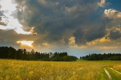 Summer landscape with stormy sky over fields Royalty Free Stock Image