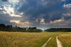 Summer landscape with stormy sky over fields Royalty Free Stock Photography