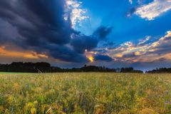 Summer landscape with stormy sky over fields Stock Photo
