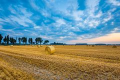 Summer landscape with stubble field Royalty Free Stock Photos