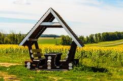Summer landscape: sunflowers field Royalty Free Stock Photo