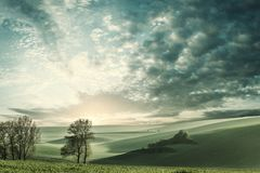 Summer landscape with sunrise and green fields royalty free stock image