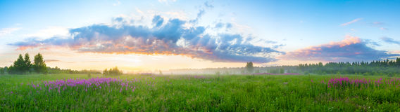 Summer  landscape with sunrise Royalty Free Stock Photos