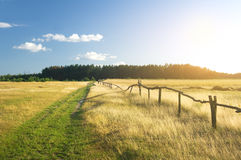 Summer landscape. Royalty Free Stock Photos