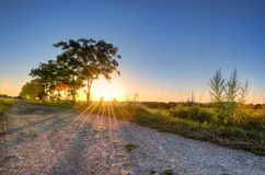 Summer landscape at sunset. Royalty Free Stock Photography