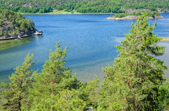 Summer landscape of Swedish fjord Royalty Free Stock Photo