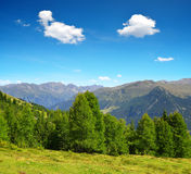 Summer landscape in Swiss Alps near Davos Royalty Free Stock Photo