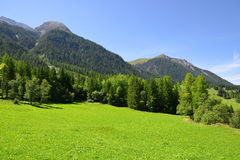Summer landscape in Switzerland Alps Stock Images