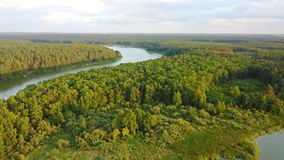 Summer landscape on Teteriv river, Zhitomir, Ukraine. Small forest near the Teteriv on sunny weather royalty free stock images