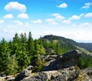 Klein Osser in National park Bavarian forest, Germany. Stock Image