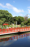 Summer Japanese garden.  Landscape . Stock Photo