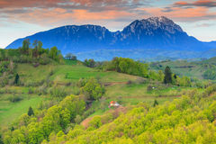 Summer landscape in Transylvania,Holbav,Romania Stock Photos