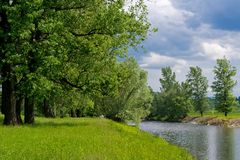 Summer landscape. With trees and calm river Stock Photos