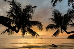 Sunset landscape on Koh Kood. Summer landscape on tropical koh Kood island in Thailand. Colorful sunset panorama taken on Klong Chao Royalty Free Stock Photo