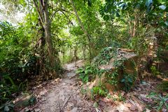 Tropical landscape of Koh Kood. Summer landscape on tropical koh Kood island in Thailand. Panorama of jungle taken on Klong Chao Royalty Free Stock Images
