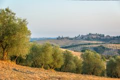 Summer landscape in Tuscany Italy. Summer landscape in Tuscany, Italy Stock Image