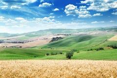Summer landscape of Tuscany Stock Photos