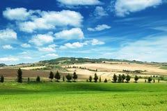 Summer landscape of Tuscany Stock Photo