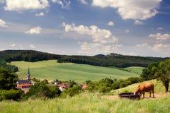 Summer Landscape Unterbodnitz Stock Image