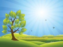 Summer landscape vector background Stock Image