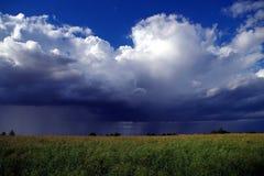 Summer landscape. View of the summer landscape stock photos