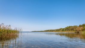 Summer landscape. view of the coast of a large lake with a cane in shallow water under a clear blue sky. Beautiful summer landscape. scenic view of the coast of Royalty Free Stock Image