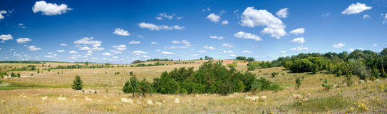 Summer landscape with view of a meadow Royalty Free Stock Photos