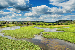 Summer landscape with village by the river Royalty Free Stock Photography