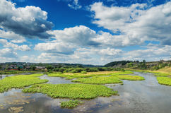 Summer landscape with village by the river Royalty Free Stock Photo