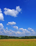 Summer landscape w. Ith cloudy sky, green grass and trees Royalty Free Stock Image