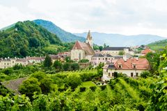 Summer Landscape in Wachau Royalty Free Stock Photo