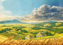 Summer Landscape with wheat Royalty Free Stock Image