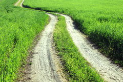 Summer Landscape With Green Grass And Road Royalty Free Stock Images