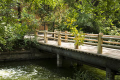 Summer landscape, wooden bridge and green leaves Stock Photo